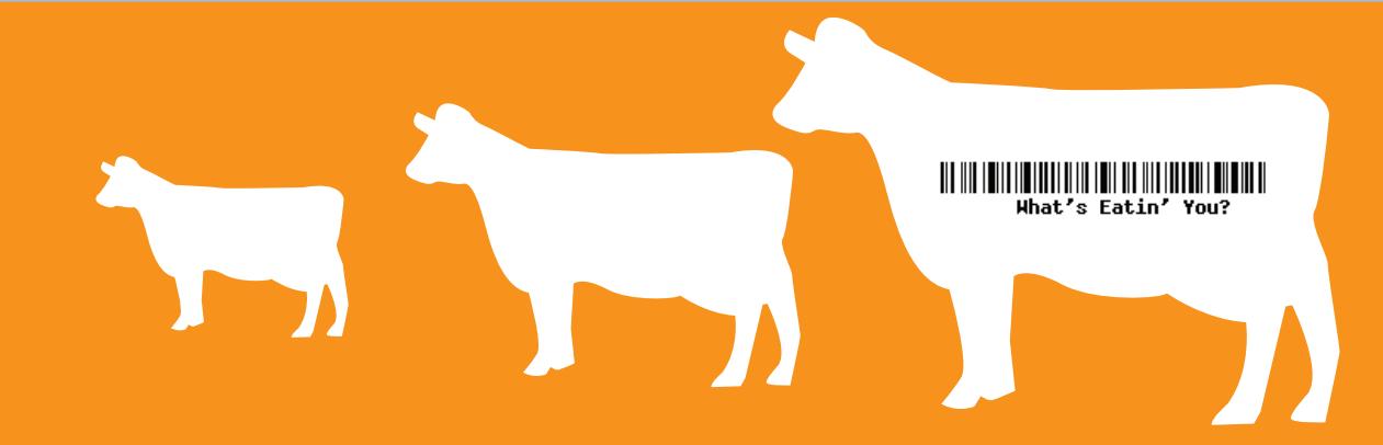 Food Politics Banner