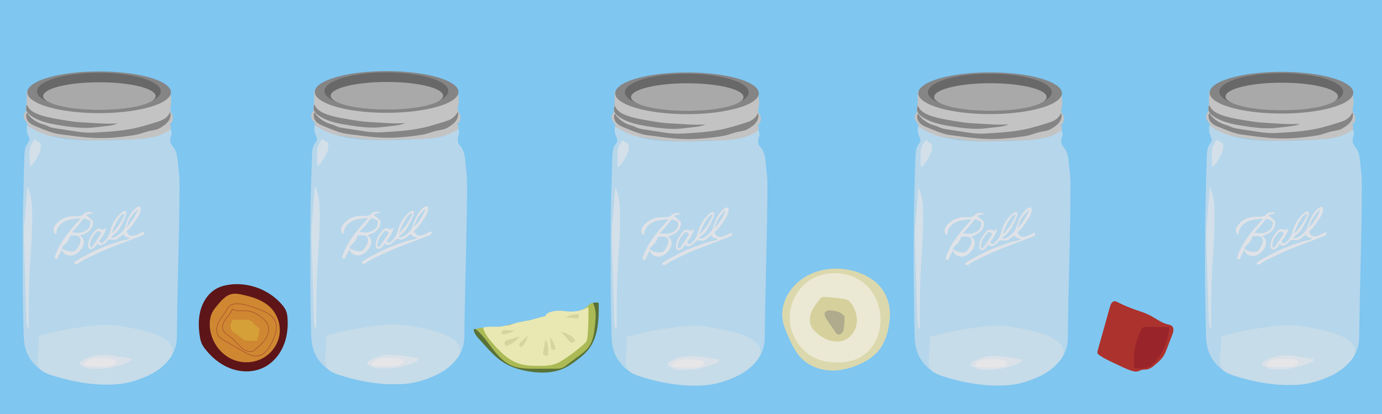 Food Fermentation Blog Banner